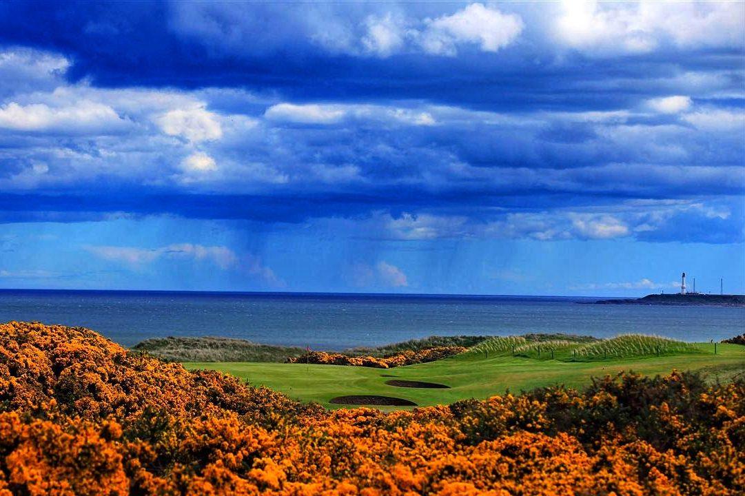 Royal Aberdeen - Balgownie